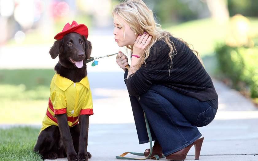 Какая порода собак подходит хозяину по знаку зодиака
